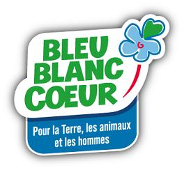 logo Bleu blan coeur